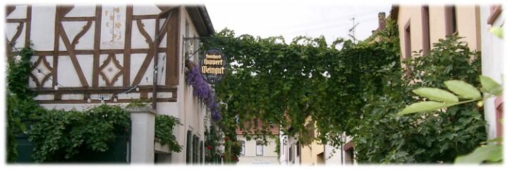 Momentaufnahme in Gundersheim